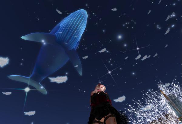クジラを置いてみた
