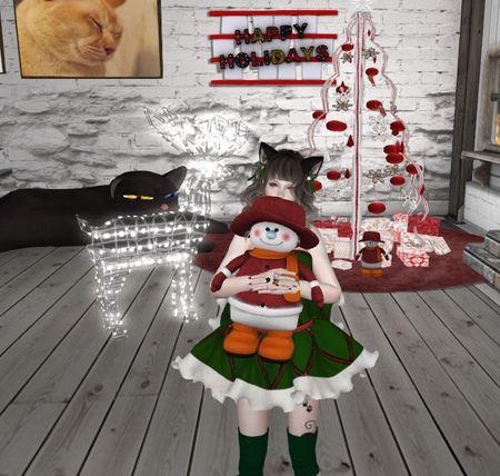 *CoCoRo* クリスマス・・・