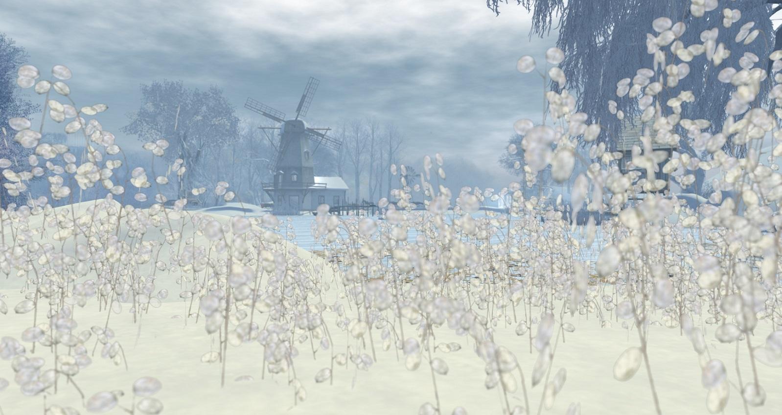 Luanes World's winter